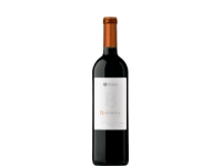 Tinto Barbera - 750 ML